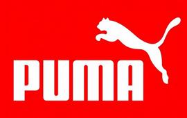 Project - Puma